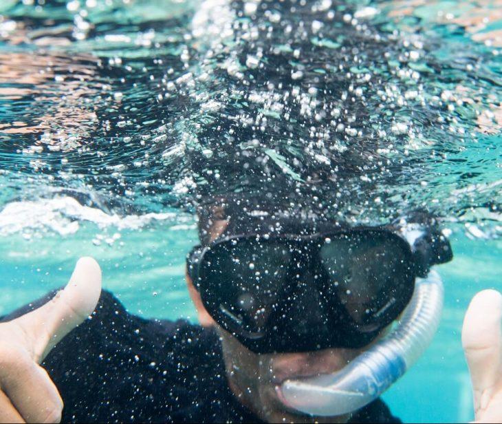Mexico Rocks Snorkel