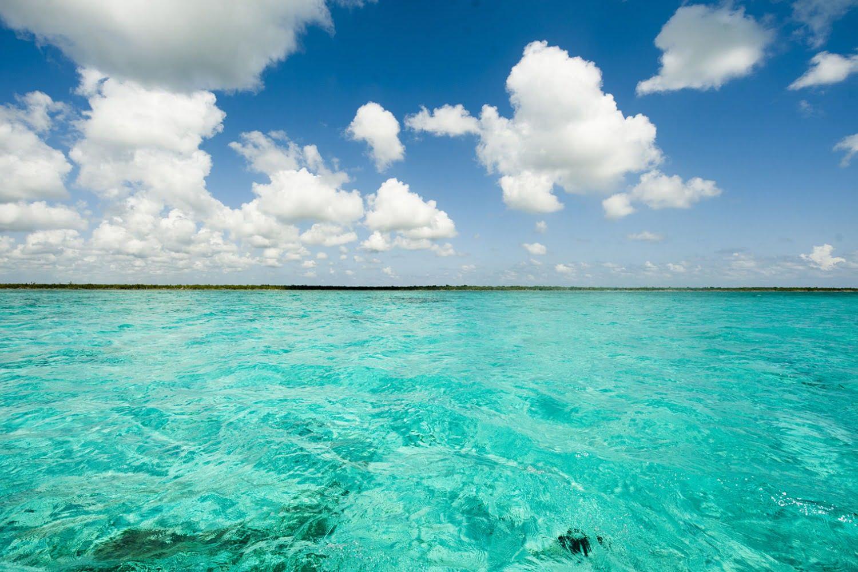 Belize Blue