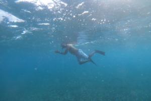 diving scuba belize