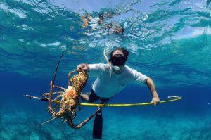 lobster fishing